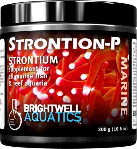 Dry Strontium Supplement - Brightwell Aquatics Strontion-P Dry Strontium Supplement, 600 grams by Brightwell Aquatics