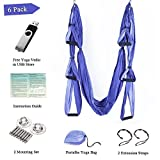 Aukiee Yoga Swing Hammock Inversion Exercises-(6 in 1) 2 Mounting Sets/2 Extension Straps/Free Vedio in USB Flash Drive (Pruple)