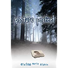 Picture Perfect (Young Adult Fiction)