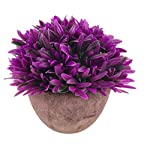 Vintage-Semi-round-Orchid-Pulp-Pot-Artificial-Plastic-Plant-Fake-Bonsai-Pink