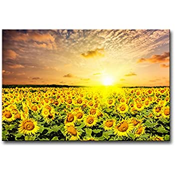 Exceptionnel Modern Canvas Painting Wall Art The Picture For Home Decoration Idyllic  Scenic   Sunflower Field On