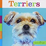 Terriers (Seedlings)