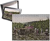 Photo Jigsaw Puzzle of Jamaica - Harvesting the Sugar Cane Crop
