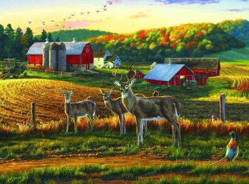 - Buffalo Games - Darrell Bush - Harvest Time - 1000 Piece Jigsaw Puzzle