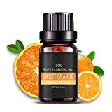 ❤️ Sunbona Clearance Plant Natural And Pure Essential Oils Carrier Aromatherapy Fragrance 10ml Moisturizing Anti Wrinkle (C)
