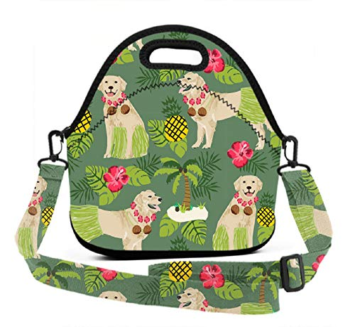 Waterproof Lunch Bag, Golden Hula Dancer Dog, Reusable Insulated Tote School Picnic Carrying Gourmet Lunchbox Container Organizer for Girls, Boys, Adults & Kids -