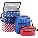 Americana Coolers, Set of 3