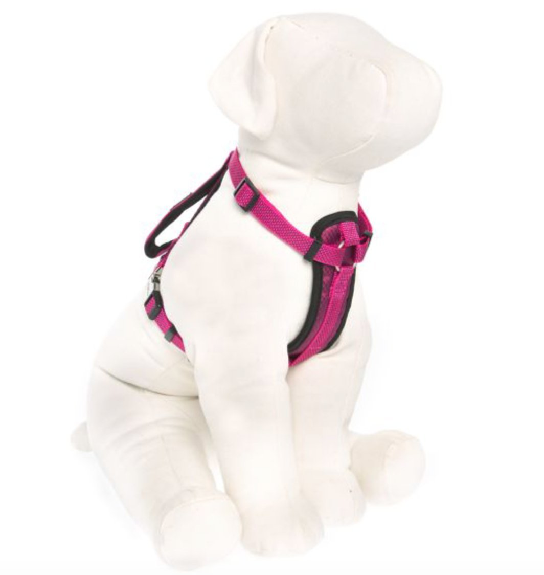 KONG Comfort Padded Chest Plate Dog Harness offered by Barker Brands Inc(Large, Pink). by KONG