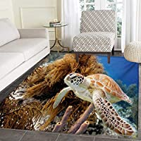 Turtle Door Mats Inside Coral Reef Sea Turtle Close up Photo Bonaire Island Waters Maritime Bath Mat tub Bathroom Mat 30x40 Pale Coffee Brown Blue