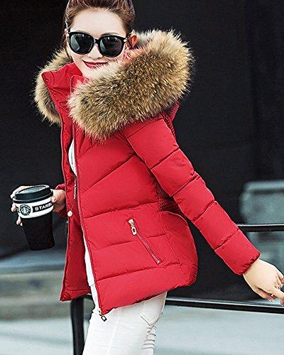 Donna Parka Elegante Giacca nbsp;giubbino Trapuntata Corta Cappotto Rosso Caldo HwqPSHr