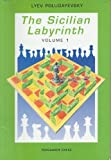 img - for The Sicilian Labyrinth, Vol. 1 (Pergamon Russian Chess Series) by Lyev Polugayevsky (1991-06-23) book / textbook / text book