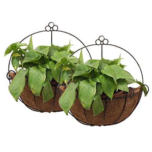 Tosnail PVC Coated Metal Wall Hanging Planter Basket with Coco Liner - Great for Indoor or Outdoor Plants - Pack of 2 (Outdoor Metal Wall Hangings)