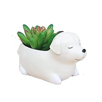 Clound city Labrador Dog Planters Animal Shaped Cartoon Succulent Planter Pots for Office, Window, Kitchen and Balcony (1pcs) (style12) : Garden & Outdoor