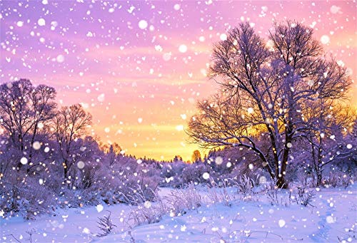 AOFOTO 5x3ft Snowfall Scene Backdrop Snowing Christmas Happy New Year Decorations Countryside Sunset Snowscape Snowflakes Snow Covered Wasteland Background for Photography Studio Props ()