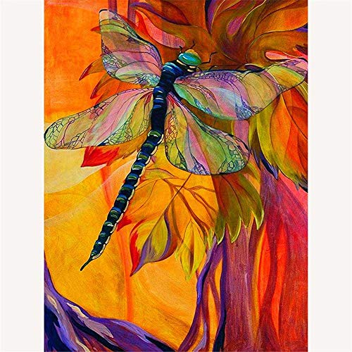 - DIY Paint by Numbers for Adults DIY Oil Painting Kit for Kids Beginner -Insect Dragonfly,16
