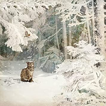 Artistic Christmas Cards Ba0380 Snowy Cat Pack Of 5 Cards