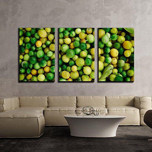 Colorful Fruit Lemon x3 Panels