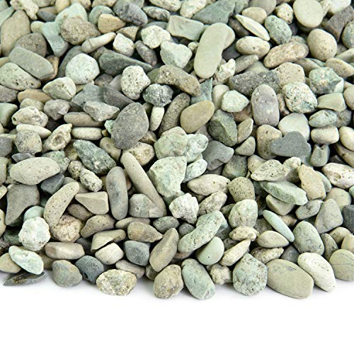 Cheap Southwest Boulder & Stone Polynesian Pebble | 20 Pounds | Natural, Decorative Stones for Landscaping, Gardening, Potted Plants, and Terrariums (Green, 3/8 Inch – 5/8 Inch)