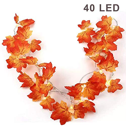 Decorate Cubicle For Halloween (Twinkle Star Thanksgiving Decoration Fall Lights, 2 Pack Maple Leaves String Lights, Each Strings with 20 LED 11 FT Battery Operated Light, Decor for Indoor, Halloween, Autumn Harvest)