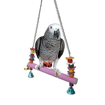 Pigeons swinging perches photo 429