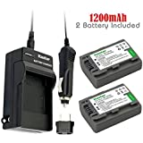 2Pcs Battery+Charger for Sony DVD HandyCam DCR-DVD105 DCR-DVD202E DCR-DVD203 DCR-DVD203E DCR-DVD205 DCR-DVD305 DCR-DVD403 DCR-DVD405 DCR-DVD408 DCR-DVD505 DCR-DVD910 DCR-DVD92