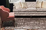 Unique Loom Sofia Traditional Area Rug, 8' 0 x