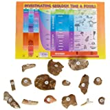 American Educational 3005B Fossil Starter Bag