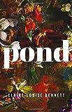 """""""Pond"""" av Claire-Louise Bennett"""