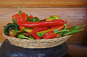 10 Lombok,Chili Pepper -From Indonesia,MILD HEAT,fresh ,Drying, Indian Cuisine,