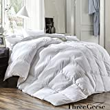 #10: THREE GEESE Luxury Queen Size White Goose Down Feather Comforter Duvet Insert Goose Down All Seasons 600 Thread Count Hypoallergenic 100% Cotton Shell Down Proof,Baffle Box Stitched.