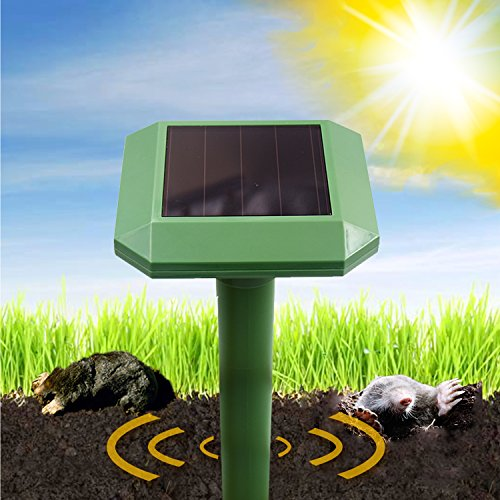 Sonic Solar Powered Mole Repeller – Zikke Professional Sonic Mole Repellent that Repels Mole, Rodent, Vole, Shrew, Gopher, Snake, Pest for Outdoor Lawn Garden Yards Covers 6,000 sq ft(2 pack)