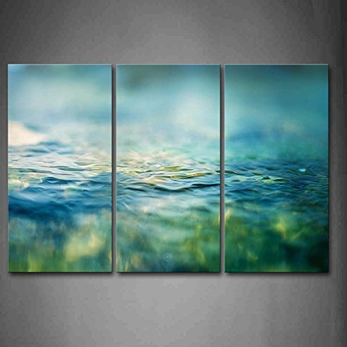 Clean Water Wall Art Painting Pictures Print On Canvas Botanical The Picture For Home Modern Decoration ()