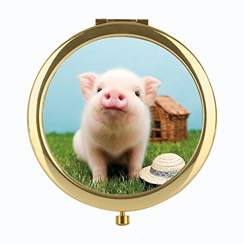 Mini Pig Skin Care - 8