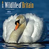 Wildlife of Britain RSPCA 2015 Wall Calendar