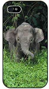 Baby Elephant playing with green grass - iPhone 5C black plastic case / Animals and Nature