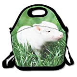Best Under Armour Lunch Boxes - Lightweight Cute Pet Pig Lunch Bag Lunch Box Review