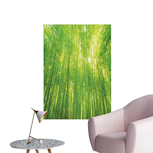 Anzhutwelve Bamboo Photo Wall Paper Image of Bamboo Trees with Sun Rays in Rainforest Exotic Wildlife Plants Nature Zen PrintGreen W24 xL36 Wall Poster