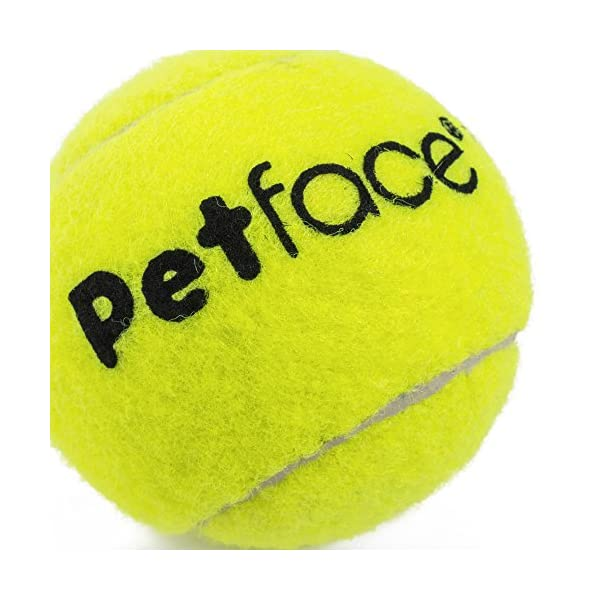Petface Tennis Balls for Dogs, 12-Piece 3