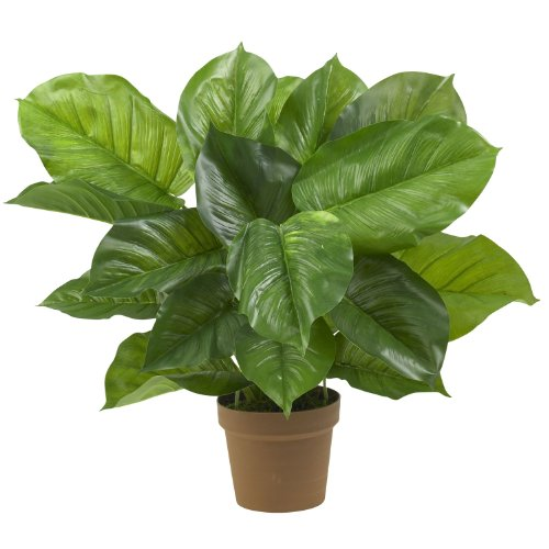 (Nearly Natural 6582 Large Leaf Philodendron Decorative Silk Plant, Green )