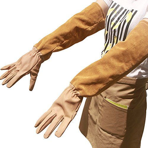 Leather Rose Pruning Gardening Gloves Puncture Resistant Work Gloves Rose Gloves Best for Gardener Orchardist Farmer Owner Men Women HCT05-US (M, Khaki) by Hense (Image #1)