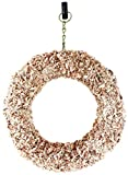 "Shop Succulents Sphagnum Moss 11"" Round Wreath Form Living"