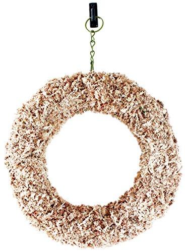 "Shop Succulents Sphagnum Moss 11"" Round Wreath Form Living"
