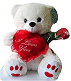 DBK Gifts Love You Teddy Bear with I Love You Heart Pillow and Rose