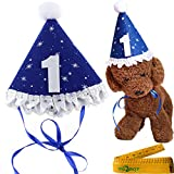 Blue Pet Dog Cat Birthday Holiday Party Hat Headwear Costume Accessory with a White Ball and Lace for Small Medium Dogs Cats Pets (1-1st year)