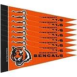 Cincinnati Bengals NFL Mini Pennant Set (8)