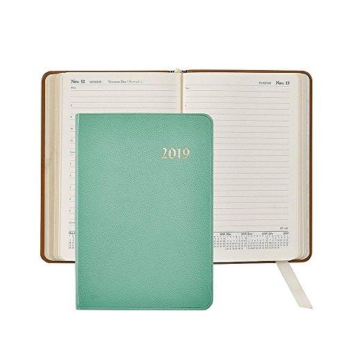 2018diario, mes y day-at-a-view páginas, Auténtico Piel De Cabra, 20,3cm (Robins Egg Blue)