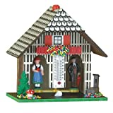German Black Forest weather house TU 801