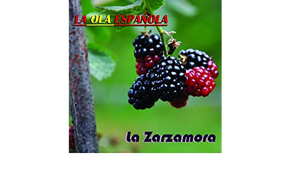 La Ola Española (La Zarzamora) by Various artists on Amazon Music - Amazon.com