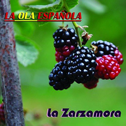 ... La Ola Española (La Zarzamora)