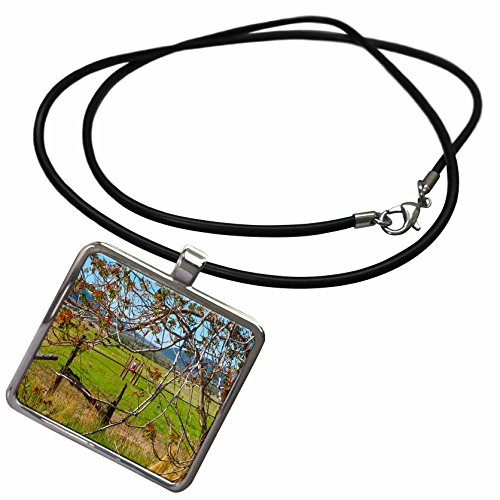 3dRose Jos Fauxtographee Realistic - A Vibrant Red and Green Leafy Tree Framing The Shot of a Water Sprinkler Wheel on Green Meadow - Necklace With Rectangle Pendant - Framing Water Trees